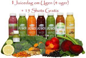 1 Juicedag om ugen (4 uger) med 1 daglig suppe